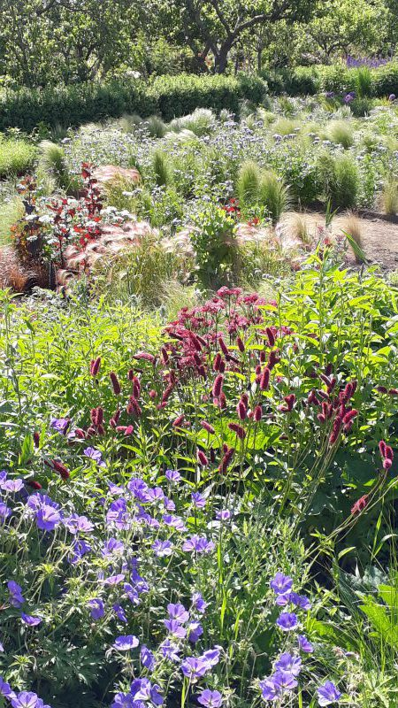 Gartenreise Schottland - Scotland for Gardeners