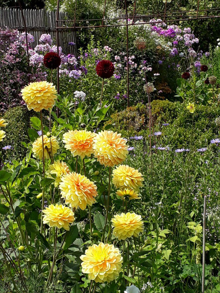 LEIDER AUSGEBUCHT Gartenreise Frankreich Genießen wie