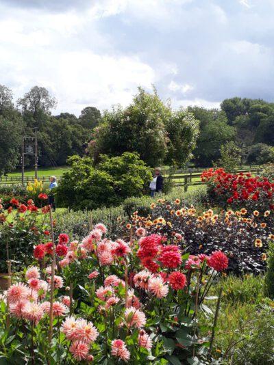 Gartenreise Frankreich - Genießen wie Gott in Frankreich 2020